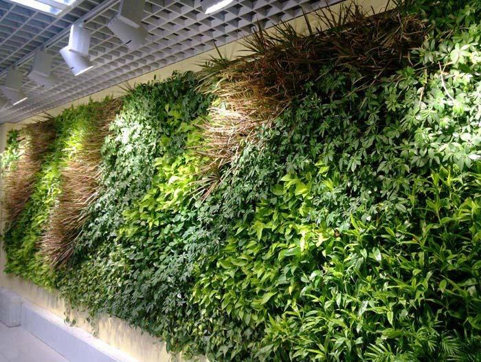 哈尔滨植物墙 哈尔滨仿真植物墙 哈尔滨智能植物墙