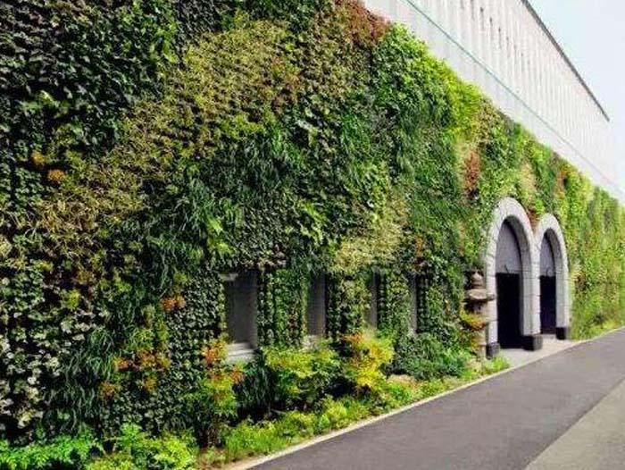 利达花卉行出售划算的哈尔滨植物墙,黑龙江园林景观