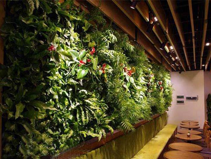 黑龙江哪里有提供靠谱的哈尔滨智能植物墙制作租赁 信誉好的绿植租摆