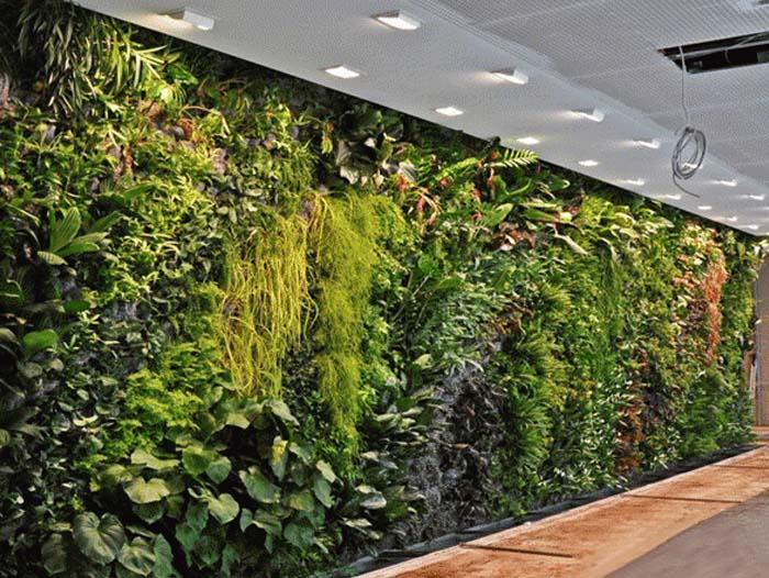 哈尔滨专业的哈尔滨植物墙批发商|黑龙江园林景观设计