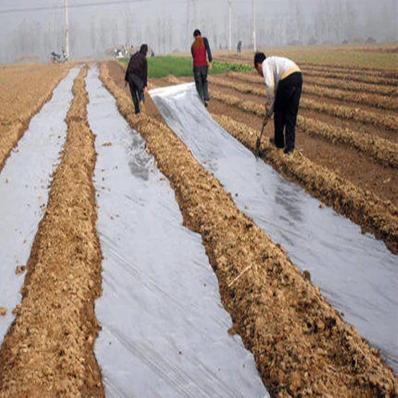 烟草种植地膜——报价合理的烟草种植地膜就在桂林国科农资