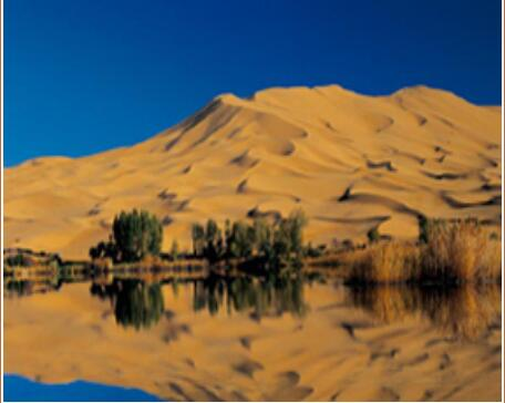 内蒙沙漠旅行社-阿拉善盟靠谱的大众群体旅游景区推荐