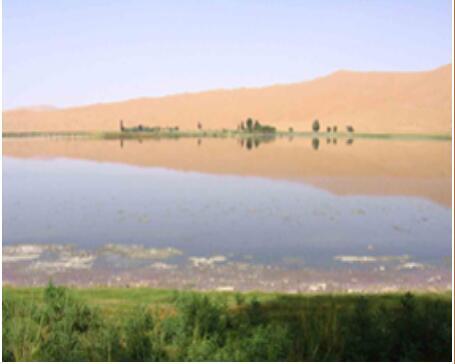 大众群体旅游景区选沙海行旅行社_放心可靠 内蒙古沙漠景点