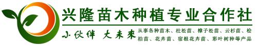 榆中兴隆苗木种植专业合作社