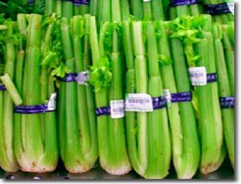 优质的深圳蔬菜配送公司,位于深圳可信赖的深圳蔬菜配送公司