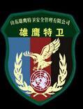 上海私人保镖、上海专业保镖、浦东区保镖公司、静安保镖雄鹰特卫