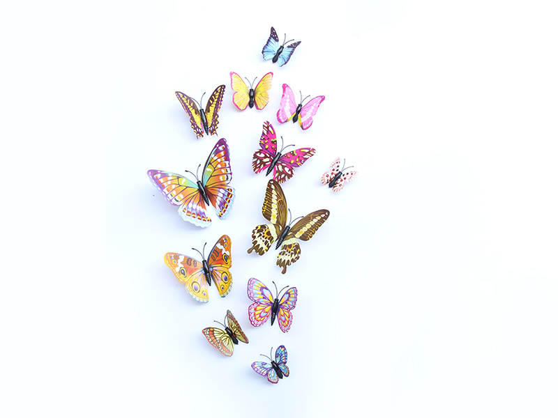 温州优良的夜光单层套装【供销】|仿真蝴蝶低价出售