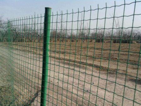 买好的荷兰网护栏当然是到昌隆护栏了-郑州荷兰网护栏价格