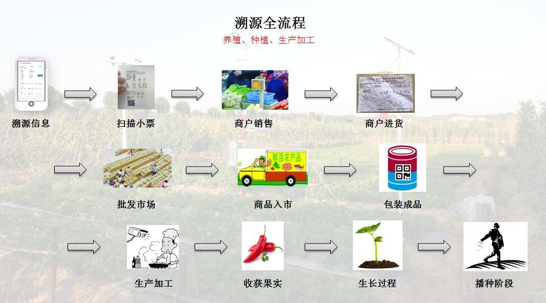 福建溯源系统造价-提供专业的打造农产品防伪溯源系统