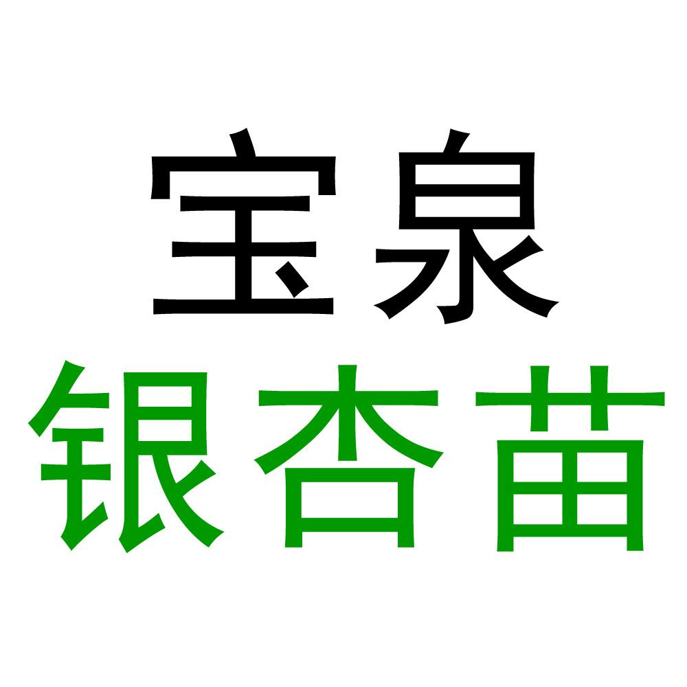 郯城县宝泉银杏苗木基地