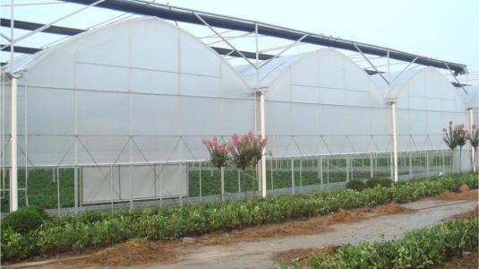 薄膜连栋温室大棚价格|耐用的连栋薄膜温室推荐
