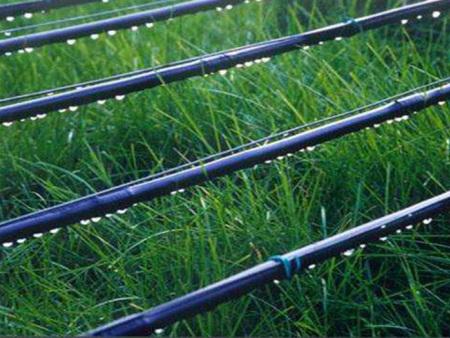 宁夏内镶式滴灌带厂家-银川鼎晟节水灌溉滴灌设备生产商