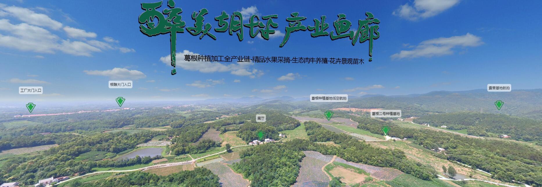 林州VR全景拍摄哪家好 可信赖的VR全景拍摄推荐