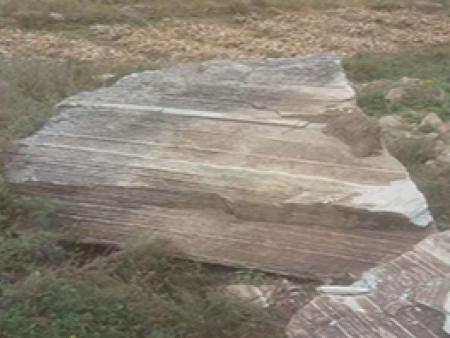 沈阳风景石-辽阳东利风景石提供的风景石怎么样
