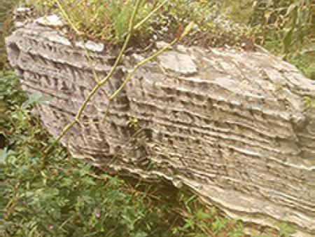 大连千层岩-辽阳品牌千层岩供应商