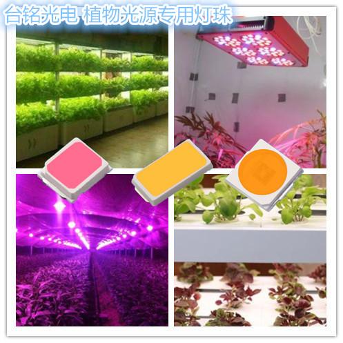 报价合理的植物补光灯-东莞耐用的植物补光灯哪里买