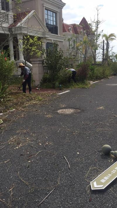 广东专业的市政道路保洁公司_广东中转站生活垃圾清运处理
