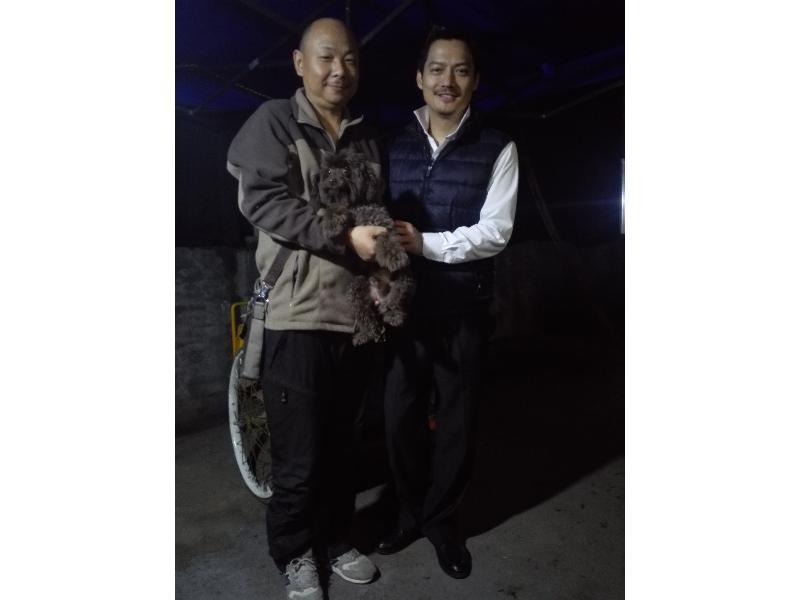 深圳训犬-泉州服务好的训犬在哪里