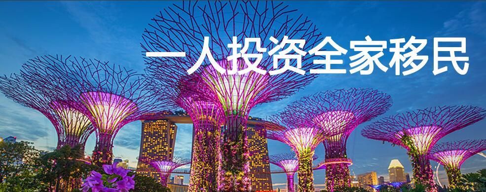 广东放心的新加坡移民推荐 新加坡工作可以移民吗