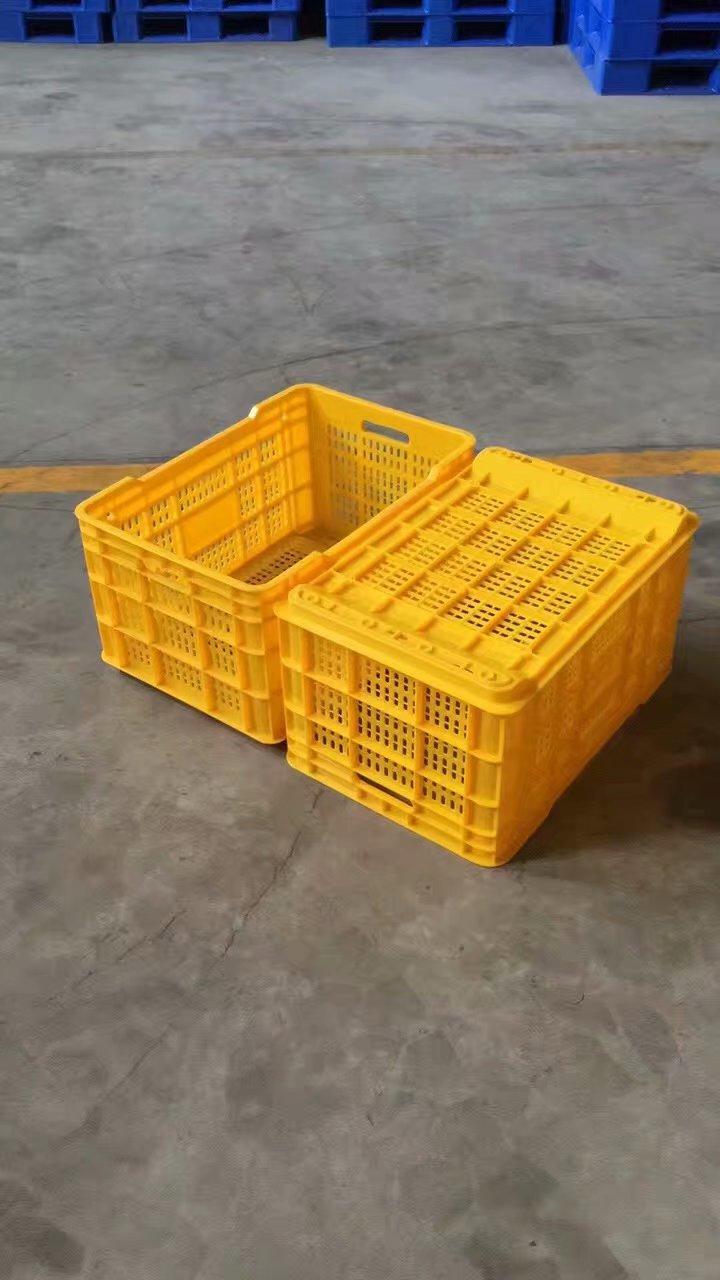 深圳塑料籮筐-珠海市物超所值周轉籮批發