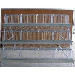 鸡笼丝厂家-优良的鸡笼丝提供商,当选光雅金属制品