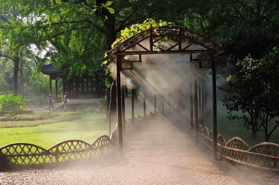 自然雾造景|哪里可以买到高压微雾景观系统