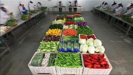 价格划算的食材配送-金华地区专业的食材配送服务