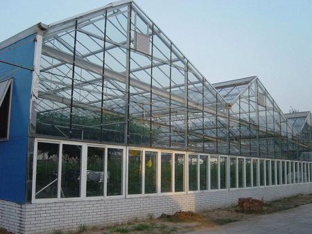 紋絡玻璃溫室大棚建造哪家好-紋絡玻璃溫室大棚設計