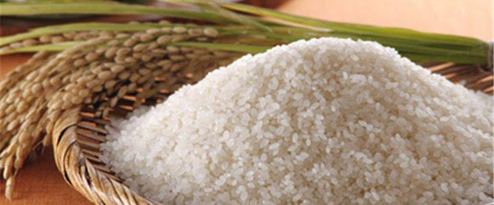 专业的大米配送批发绿苑农副产品配送服务提供|推荐大米配送价格