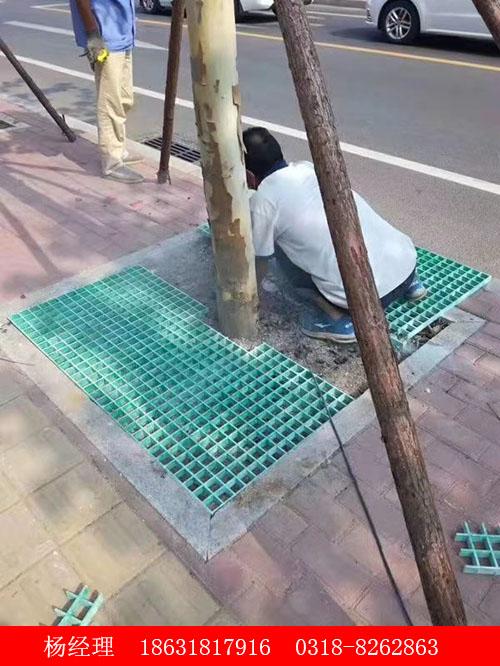 河北价格合理的玻璃钢树篦子批销,供应玻璃钢树篦子