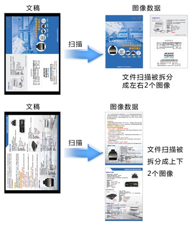 广东网上阅卷-衡水高质量的网上阅卷软件哪里买