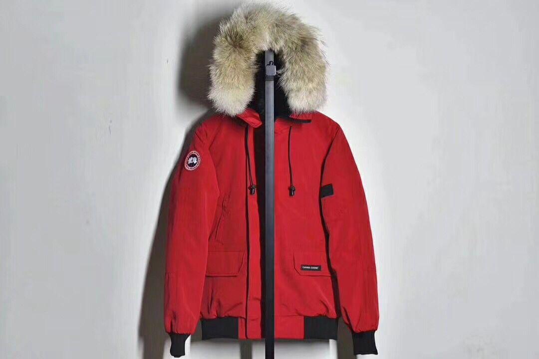 加拿大鹅中国经商销_怎样购买有品质的中国加拿大鹅羽绒服