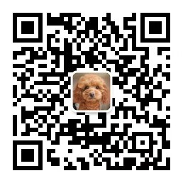 【珍爱宠物】烟台宠物用品 烟台宠物用品店 烟台宠物用品批发