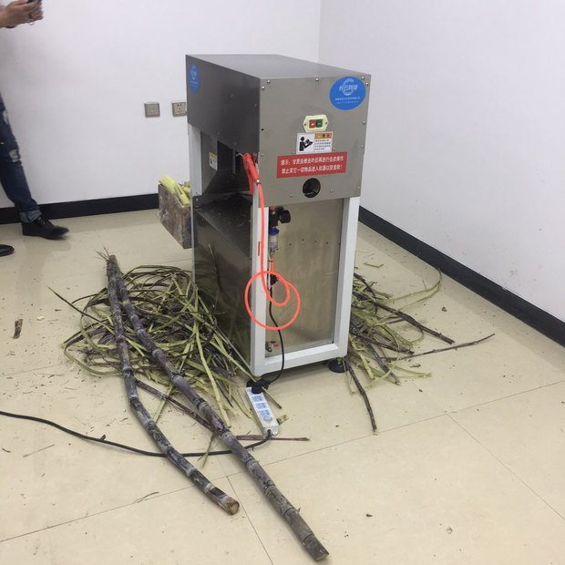 西宁甘蔗去皮机一台多少钱-诚信经营的甘蔗去皮机厂家