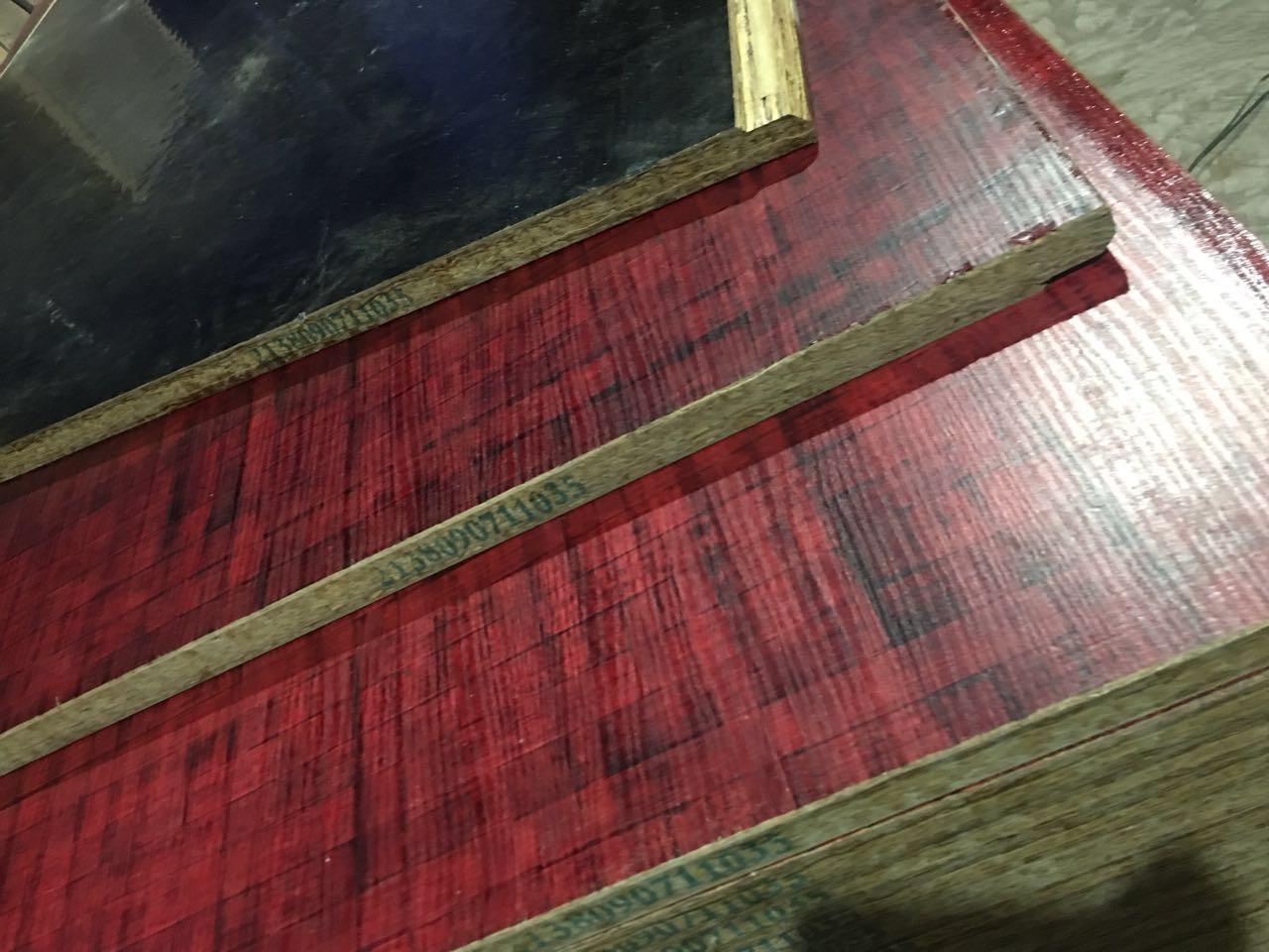 山东集装箱竹木复合底板厂家-供应山东有口皆碑集装箱竹底板