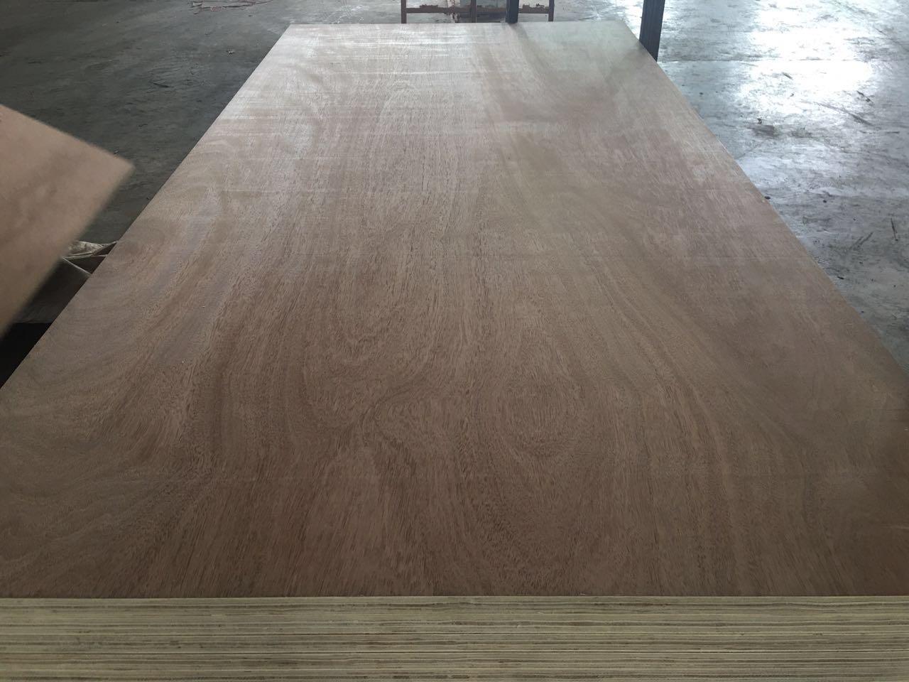臨沂優惠的集裝箱竹底板出售 山東集裝箱修箱板廠家