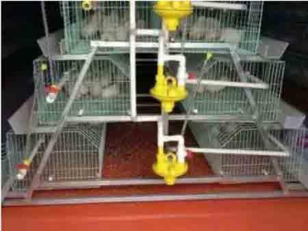 鸡粪便传送带_优良的提供商当属金牧阳机械-鸡粪便传送带