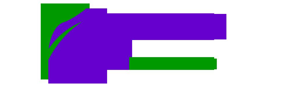 东方德创(北京)教育咨询有限公司