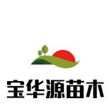 青岛宝华源苗木专业合作社