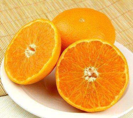 特色的柑橘-哪里有供應精裝柑橘