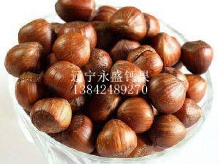 葫芦岛钙果苗木-大量出售钙果苗木