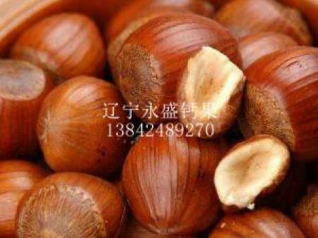 锦州钙果果实-钙果果实哪里有卖