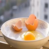 北京哪里有提供口碑好的蔬之鲜禽蛋配送_禽蛋配送公司