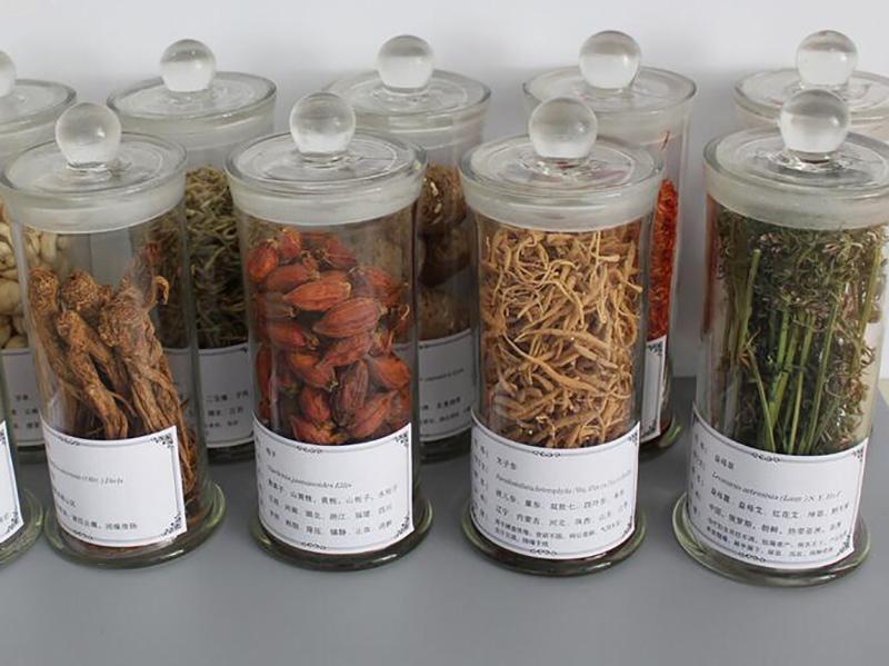 想买口碑好的植物浸渍标本,就到峰达教学设备_定西植物浸渍标本价格