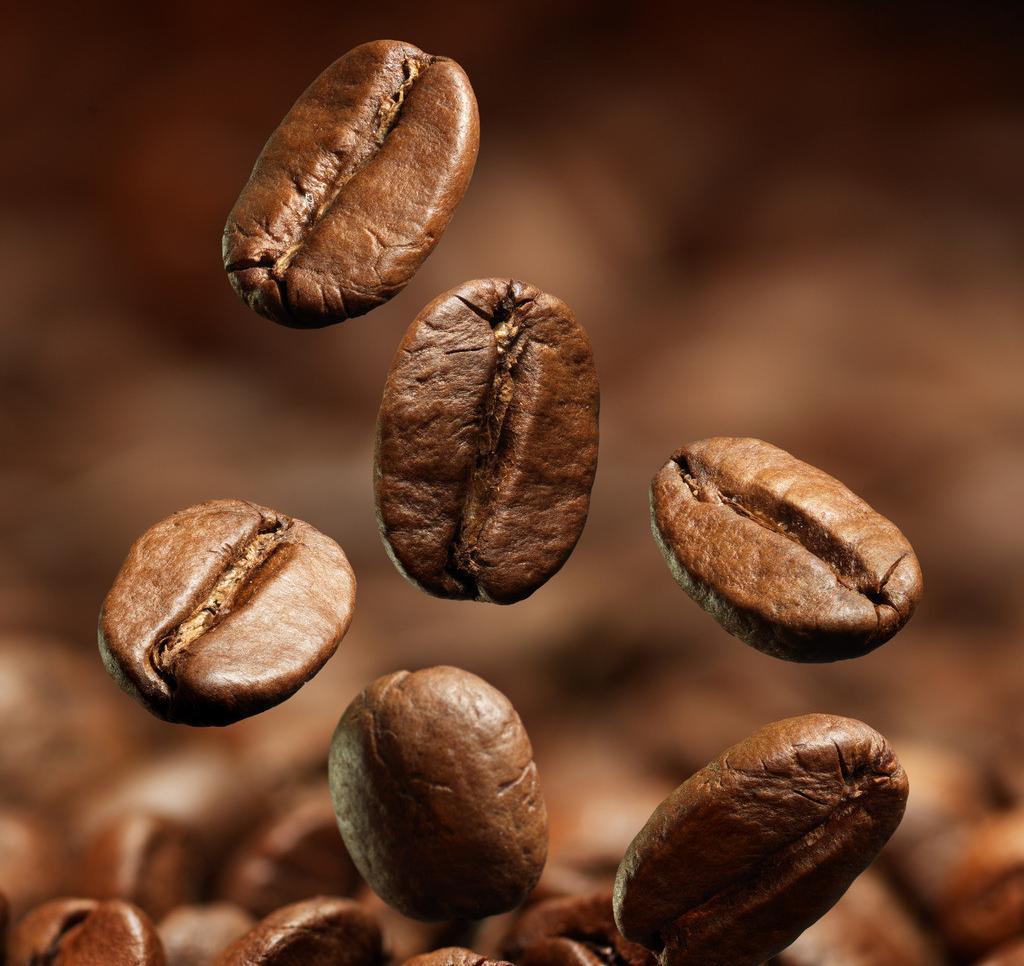 广西咖啡豆品牌推荐-南宁价位合理的咖啡豆哪里买找南宁卓越咖啡