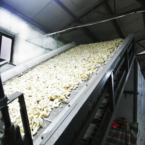 高性价农业烘干机,河南百信机械倾力推荐|江西农业烘干机