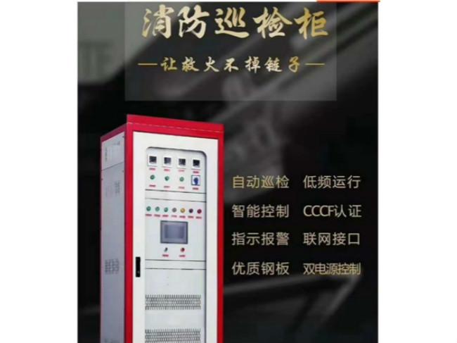 畅销消防巡检柜 好用的消防巡检柜雷龙电气供应