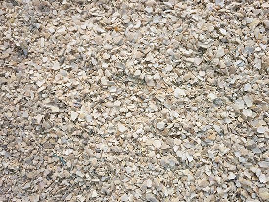济南贝壳粉|高性价贝壳粉辽宁宏洋贝壳供应