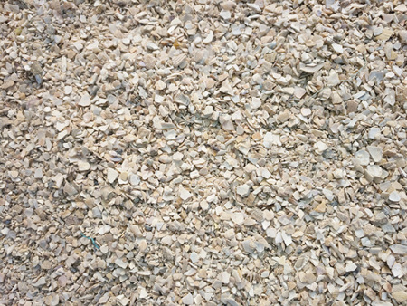 带你了解多样用途的辽宁饲料贝壳粉
