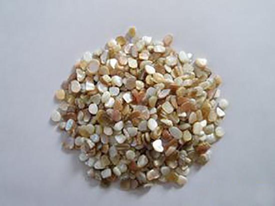濟南貝殼粉-大量供應高性價貝殼粉